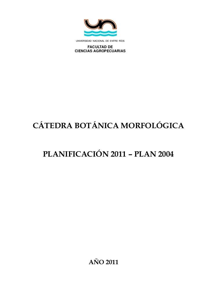 UNIVERSIDAD NACIONAL DE ENTRE RÍOS              FACULTAD DE        CIENCIAS AGROPECUARIASCÁTEDRA BOTÁNICA MORFOLÓGICA PLAN...