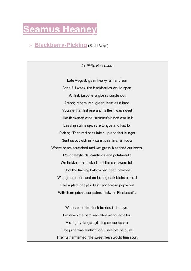 Seamus Heaney ➢ Blackberry-Picking (Rochi Vago) for Philip Hobsbaum Late August, given heavy rain and sun For a full wee...