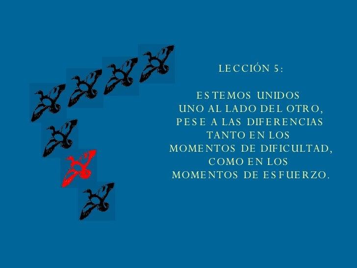 LECCIÓN 5: ESTEMOS UNIDOS  UNO AL LADO DEL OTRO, PESE A LAS DIFERENCIAS TANTO EN LOS  MOMENTOS DE DIFICULTAD, COMO EN LOS ...