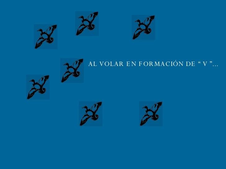 """AL VOLAR EN FORMACIÓN DE """" V """"..."""