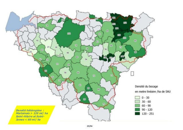 29/94 Densité hétérogène : Mortainais > 120 ml/ ha Saint-Hilaire et Saint- James < 60 ml/ ha