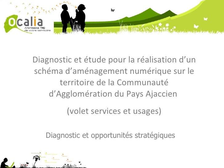 Diagnostic et étude pour la réalisation d'un schéma d'aménagement numérique sur le territoire de la Communauté d'Aggloméra...