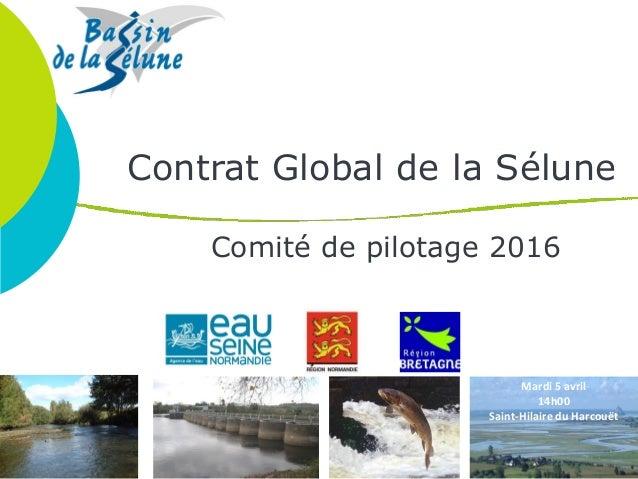 Contrat Global de la Sélune Comité de pilotage 2016 Mardi 5 avril 14h00 Saint-Hilaire du Harcouët
