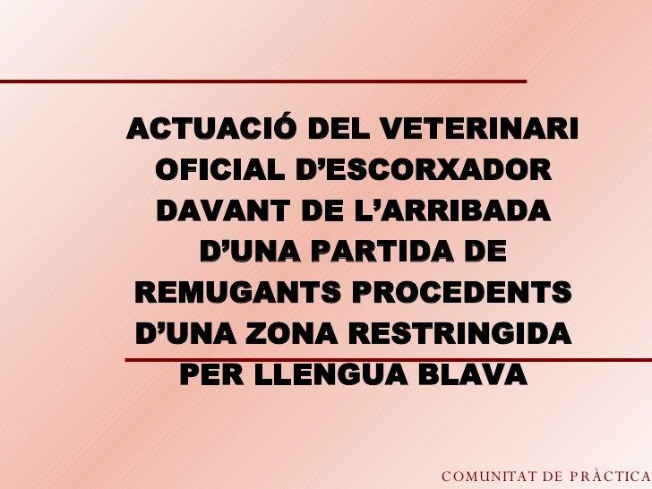 COMUNITAT DE PRÀCTICA ACTUACIÓ DEL VETERINARI OFICIAL D'ESCORXADOR DAVANT DE L'ARRIBADA D'UNA PARTIDA DE REMUGANTS PROCEDE...