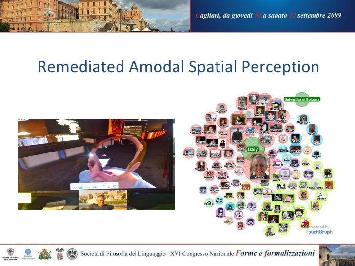 Remediated Amodal Spatial Perception