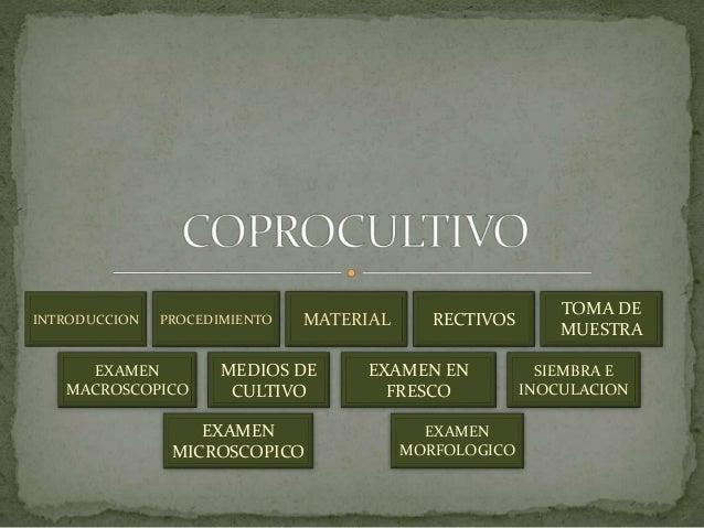 INTRODUCCION PROCEDIMIENTO MATERIAL  EXAMEN  MACROSCOPICO  TOMA DE  MUESTRA  MEDIOS DE  CULTIVO  SIEMBRA E  INOCULACION  E...