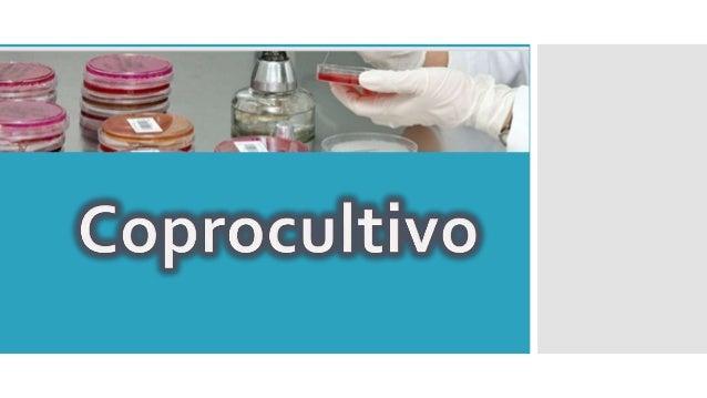 Coprocultivo Es un examen de laboratorio para encontrar organismos en las heces, que puedan causar enfermedades y síntomas...