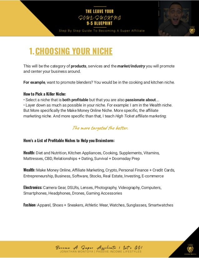 1.CHOOSING YOUR NICHE This will be the category of products, services and the market/industry you will promote and center ...