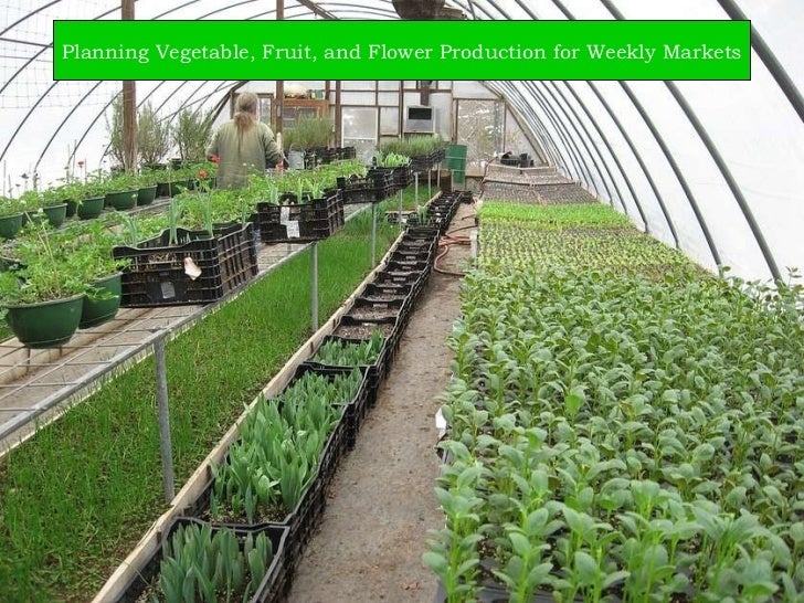 Planning Vegetable, Fruit, and Flower Production for Weekly Markets