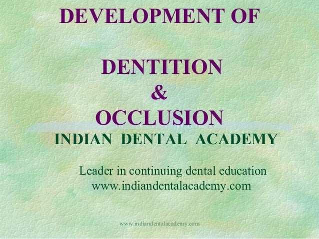 DEVELOPMENT OF DENTITION & OCCLUSION INDIAN DENTAL ACADEMY Leader in continuing dental education www.indiandentalacademy.c...
