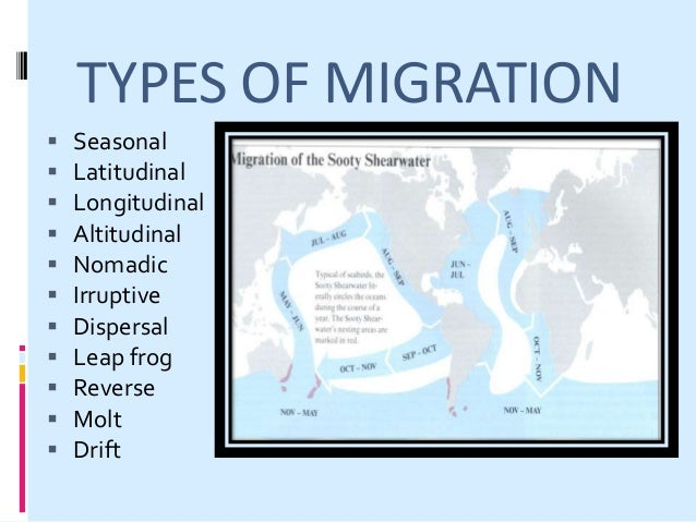 WHAT ARE THE BENEFITS OF MIGRATION?  Foraging  Protection  Mating  Raising families  Aerodynamics  Warmth