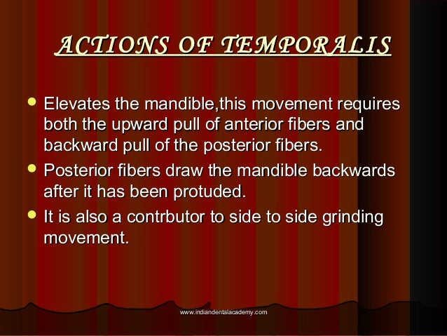 ACTIONS OF TEMPORALISACTIONS OF TEMPORALIS  Elevates the mandible,this movement requiresElevates the mandible,this moveme...