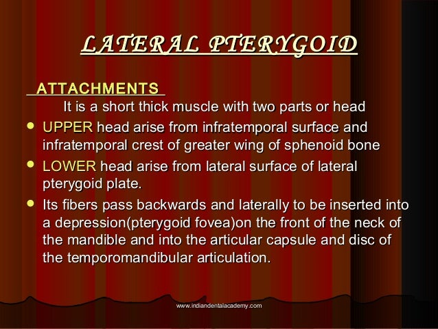 LATERAL PTERYGOIDLATERAL PTERYGOID ATTACHMENTSATTACHMENTS It is a short thick muscle with two parts or headIt is a short t...