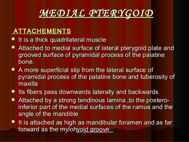 MEDIAL PTERYGOIDMEDIAL PTERYGOID ATTACHEMENTSATTACHEMENTS  It is a thick quadrilateral muscleIt is a thick quadrilateral ...