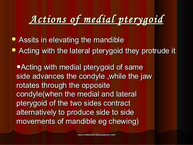 Actions of medial pterygoidActions of medial pterygoid  Assits in elevating the mandibleAssits in elevating the mandible ...