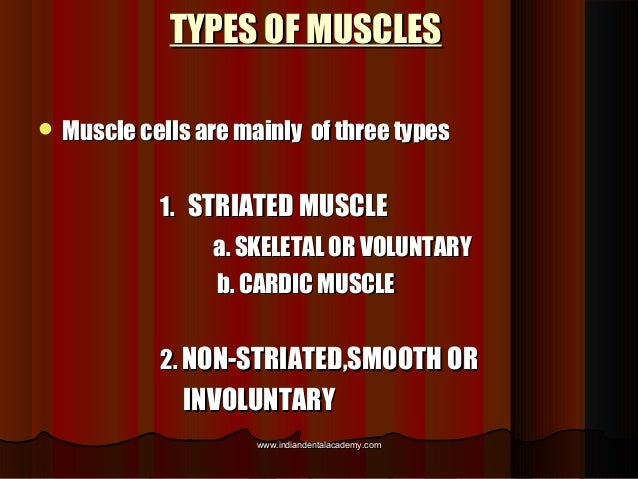 TYPES OF MUSCLESTYPES OF MUSCLES  Muscle cells are mainly of three typesMuscle cells are mainly of three types 1.1. STRIA...