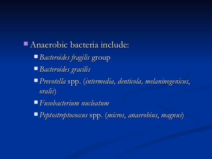 <ul><ul><li>Anaerobic bacteria include:  </li></ul></ul><ul><ul><ul><li>Bacteroides fragilis  group  </li></ul></ul></ul><...