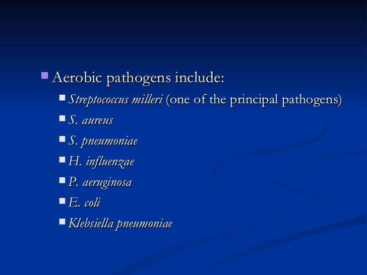 <ul><ul><li>Aerobic pathogens include:  </li></ul></ul><ul><ul><ul><li>Streptococcus milleri  (one of the principal pathog...