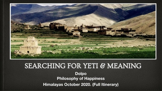 SEARCHING FOR YETI & MEANING