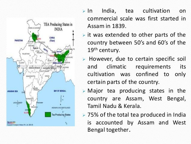 industry analysis tea industry The global organic tea market research report 2018 contains historic data that spans 2013 to 2017, and then continues to forecast to 2025 that makes this report so invaluable for the.