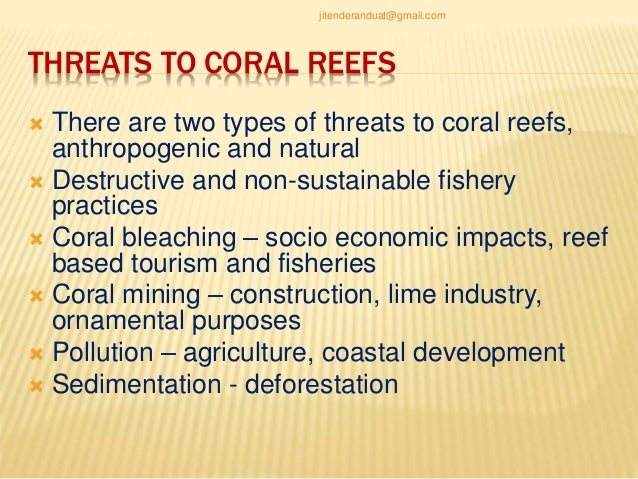an analysis of the development and importance of coral reefs in the oceans An analysis of the fossil record shows that coral reefs are most often  be that  reefs become one of many important cradles, rather than the most  for new  species to develop as new habitats form or ecological niches open.