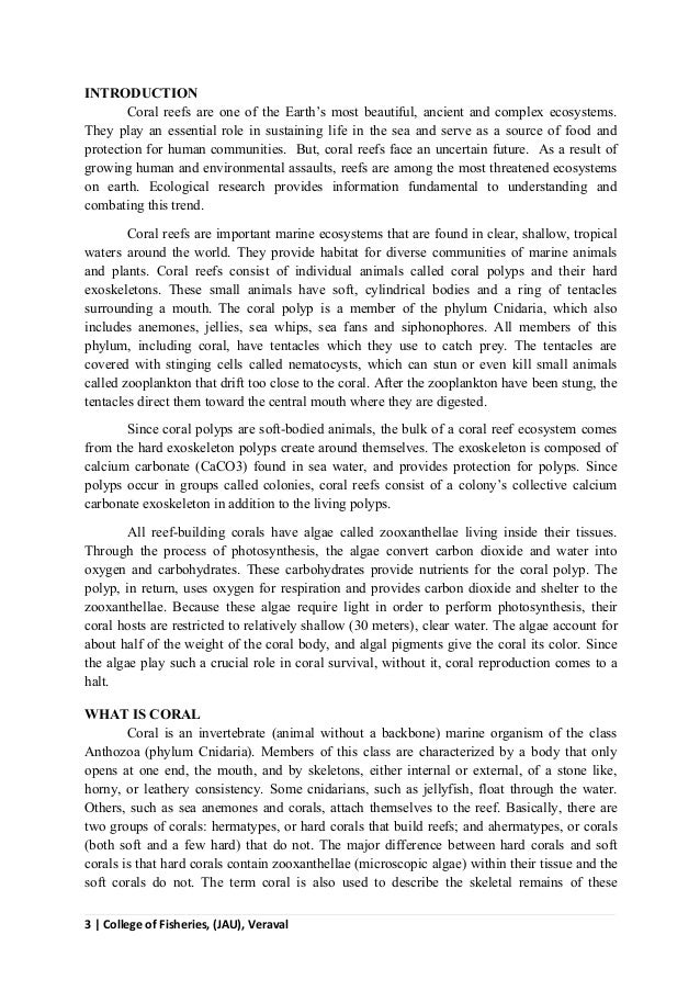 essay about color library in nepali
