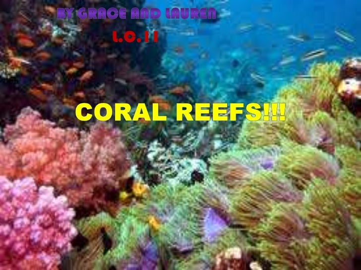 By Grace and Lauren<br />L.C.11<br />Coral Reefs!!!<br />