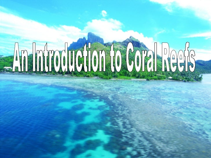 An Introduction to Coral Reefs
