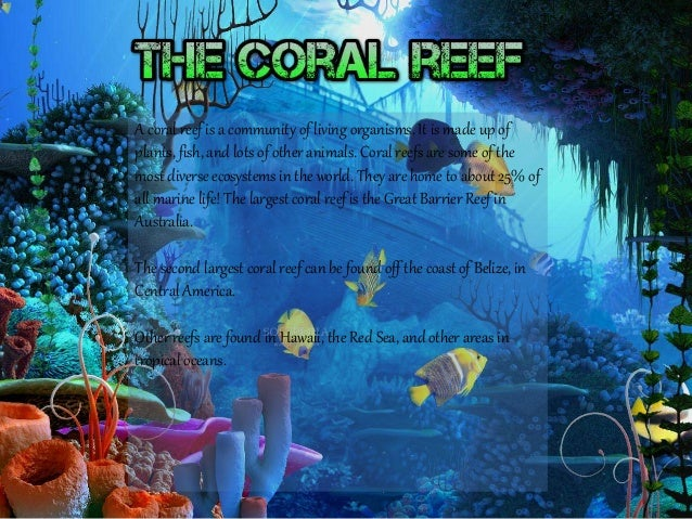 A coral reef is a community of living organisms. It is made up of plants, fish, and lots of other animals. Coral reefs are...