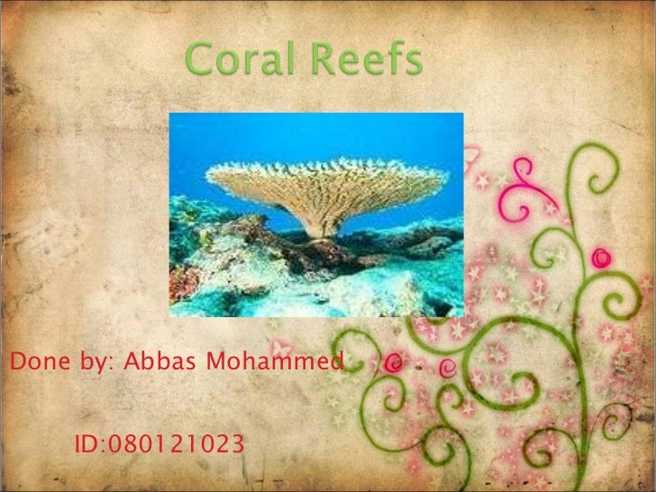 Done by: Abbas Mohammed ID:080121023