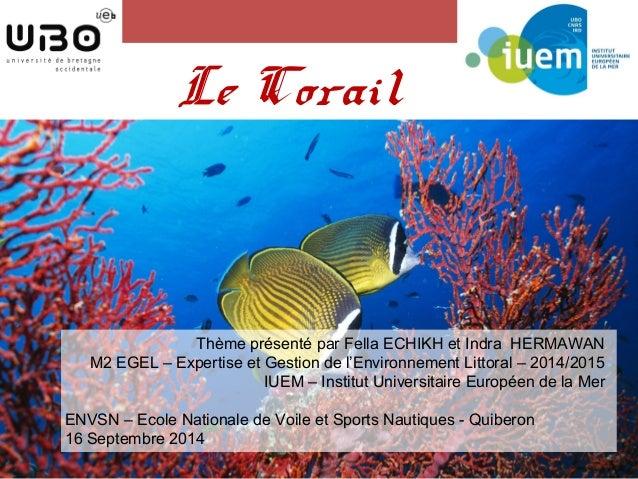 Le Corail  Thème présenté par Fella ECHIKH et Indra HERMAWAN  M2 EGEL – Expertise et Gestion de l'Environnement Littoral –...