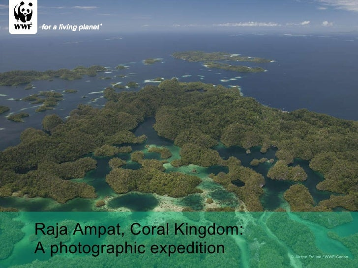 © Jürgen Freund / WWF-Canon Raja Ampat, Coral Kingdom: A photographic expedition