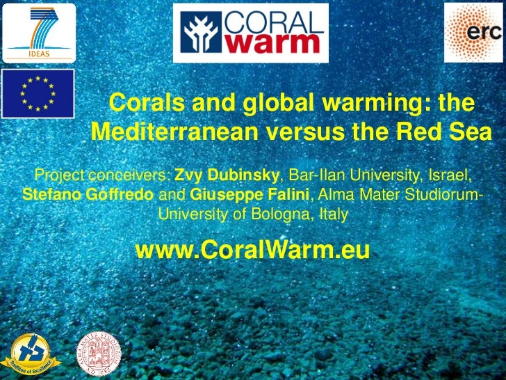 Corals and global warming: the         Mediterranean versus the Red Sea Project conceivers: Zvy Dubinsky, Bar-Ilan Univers...
