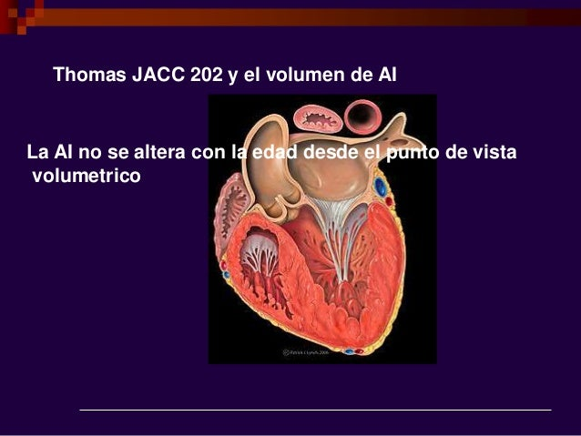 Thomas JACC 202 y el volumen de AI La AI no se altera con la edad desde el punto de vista volumetrico