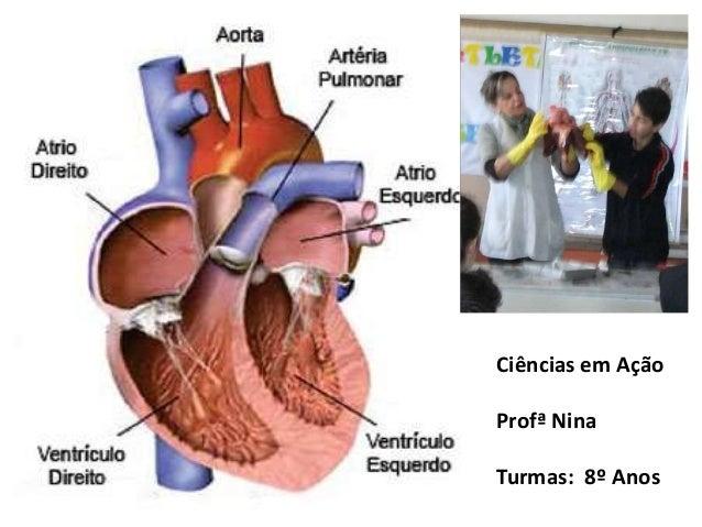 Ciências em Ação Profª Nina Turmas: 8º Anos