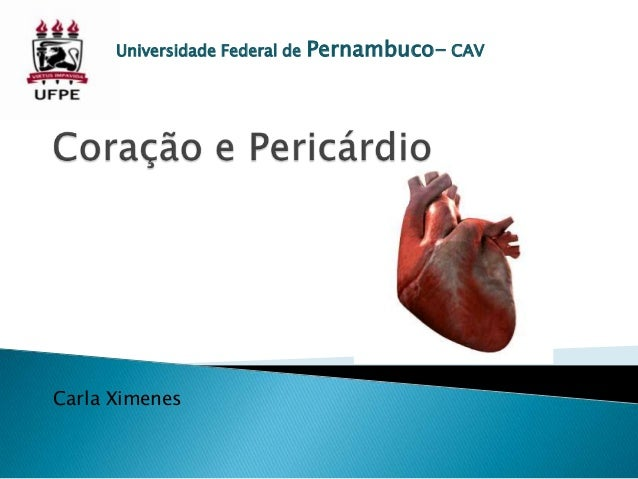 Universidade Federal de  Carla Ximenes  Pernambuco- CAV