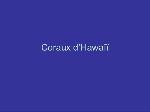 Coraux d'Hawaïï