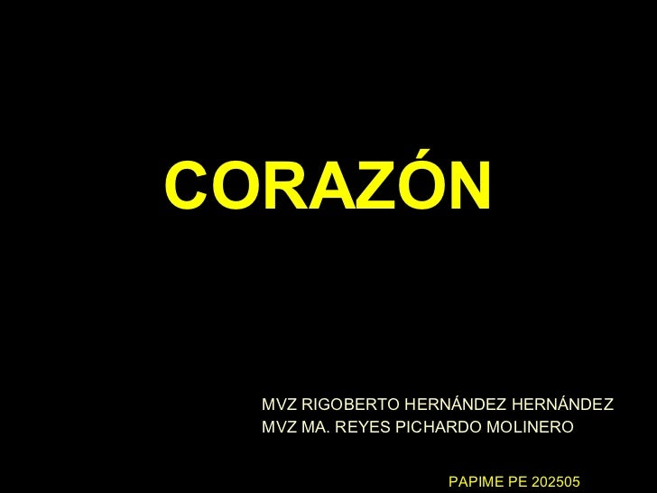 CORAZÓN MVZ RIGOBERTO HERNÁNDEZ HERNÁNDEZ MVZ MA. REYES PICHARDO MOLINERO PAPIME PE 202505