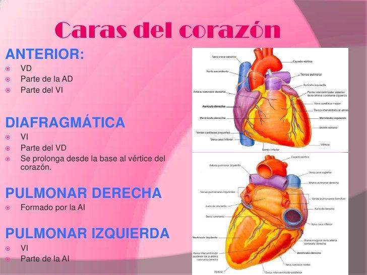 Corazón 2012 informatica
