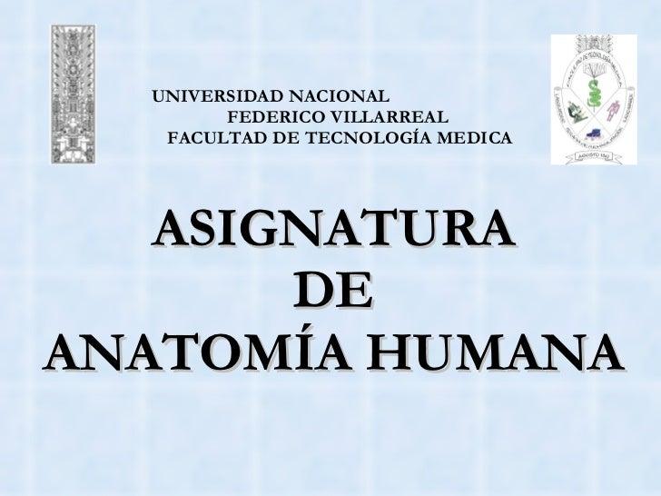UNIVERSIDAD NACIONAL    FEDERICO VILLARREAL   FACULTAD DE TECNOLOGÍA MEDICA ASIGNATURA  DE  ANATOMÍA HUMANA