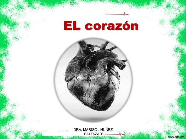 EL corazón  DRA. MARISOL NUÑEZ  BALTAZAR