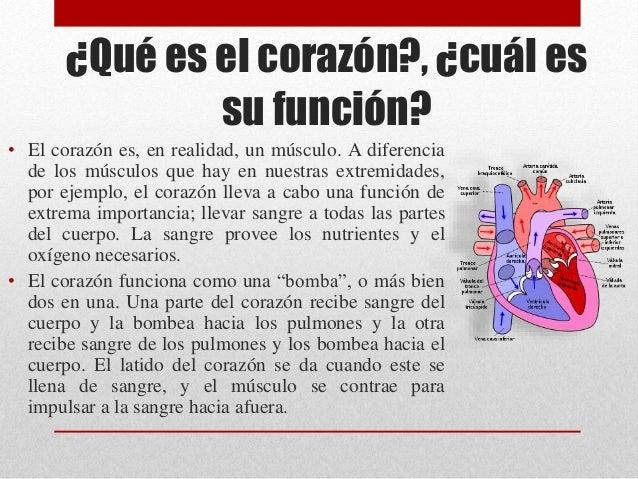 Cómo los intestinos hablan con el corazón?