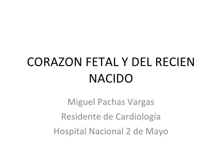 Corazon Fetal Y Del Recien Nacido