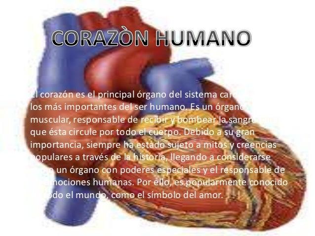 Corazon humano 12