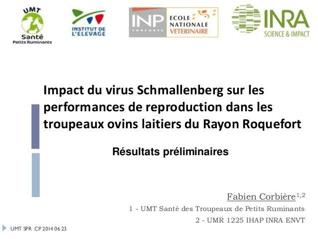 UMT SPR CP 2014 06 23 Impact du virus Schmallenberg sur les performances de reproduction dans les troupeaux ovins laitiers...