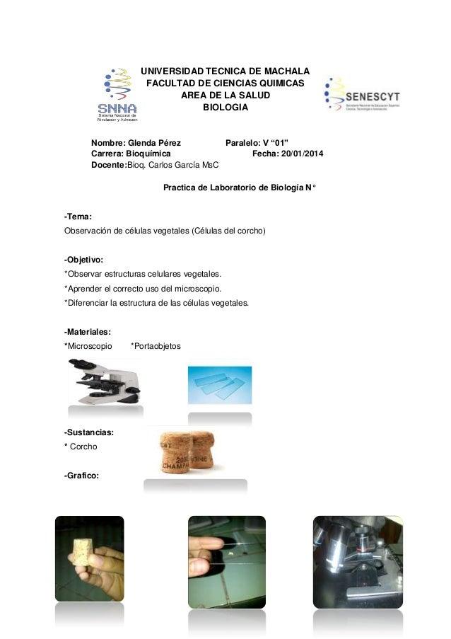 """UNIVERSIDAD TECNICA DE MACHALA FACULTAD DE CIENCIAS QUIMICAS AREA DE LA SALUD BIOLOGIA  Nombre: Glenda Pérez Paralelo: V """"..."""