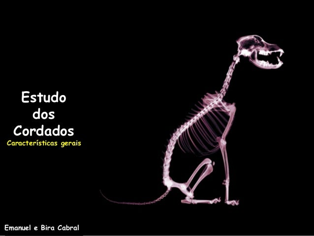 EstudodosCordadosCaracterísticas geraisEmanuel e Bira Cabral