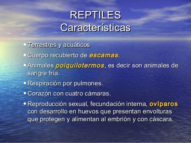 REPTILES Características • Terrestres y acuáticos • Cuerpo recubierto de escamas . • Animales poiquilotermos , es decir so...