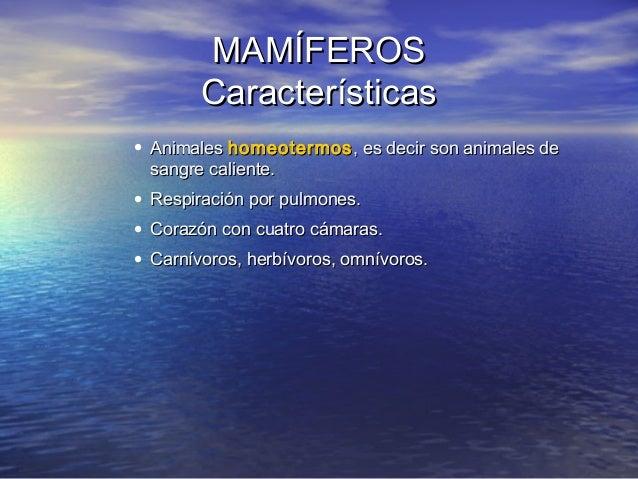 MAMÍFEROS Características • Animales homeotermos , es decir son animales de sangre caliente. • Respiración por pulmones. •...