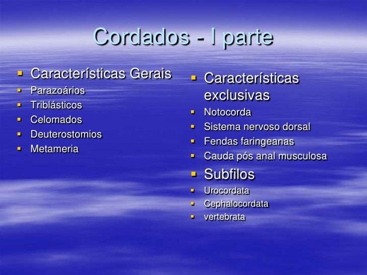 Cordados - I parte  Características Gerais    Características    Parazoários                              exclusivas  ...
